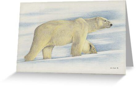 Winter Wanderer by John Houle