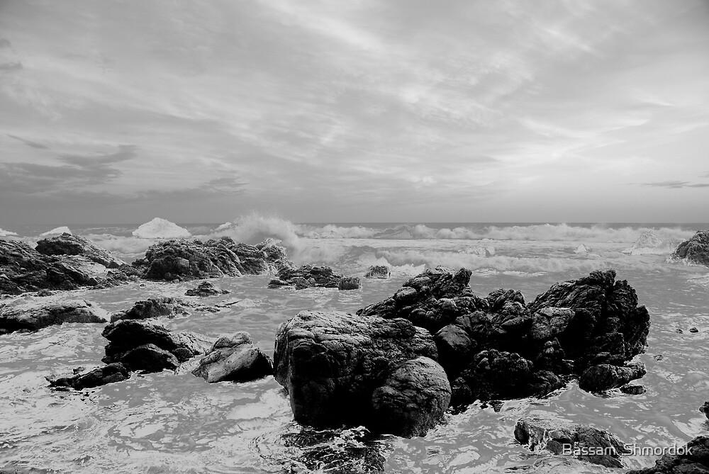 The west coast by Bassam  Shmordok