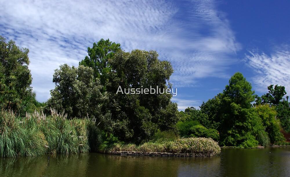Botanic Gardens Lake by Aussiebluey