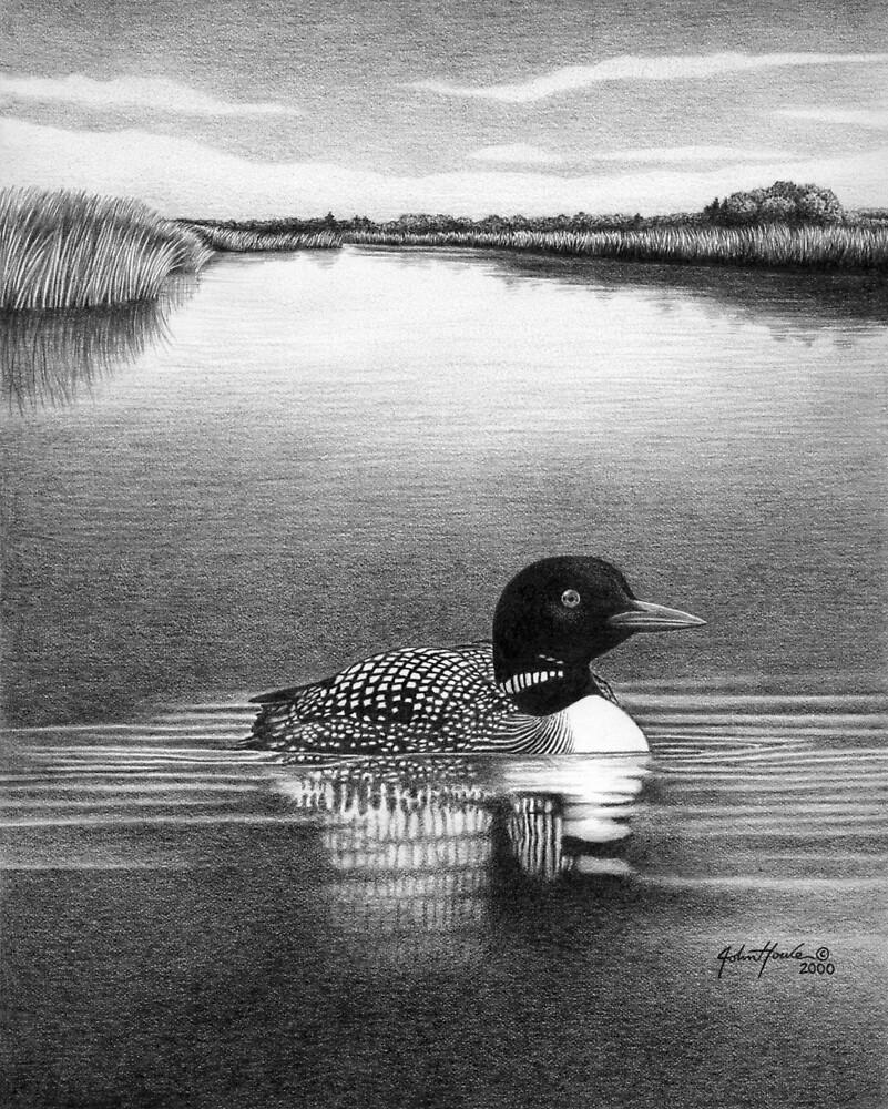 Solitude by John Houle
