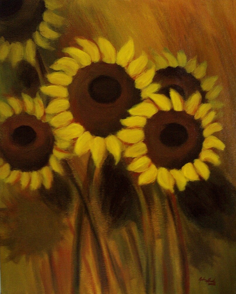Sun Shadows by John Houle