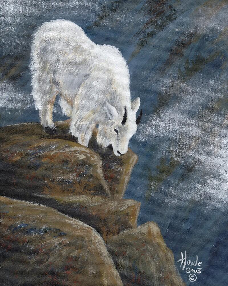 Downward Bound by John Houle