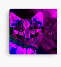 Abstract Kittens Canvas Print