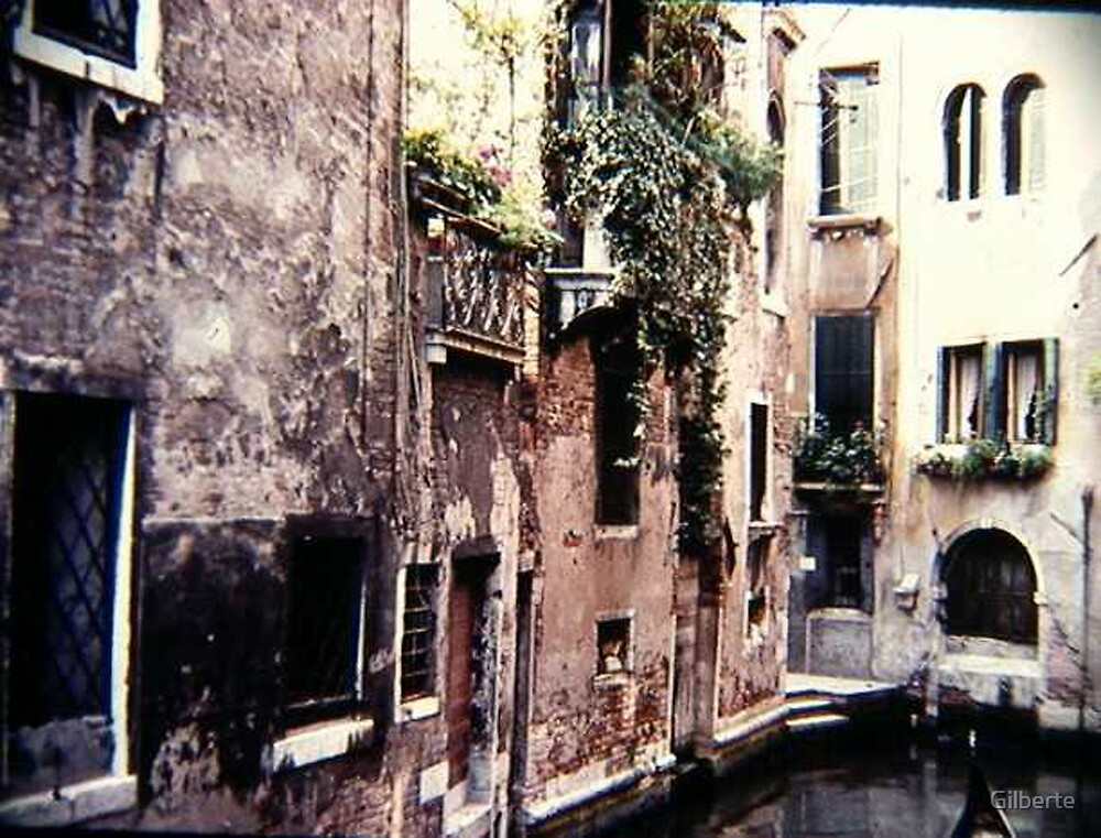 Picturesque Venice by Gilberte
