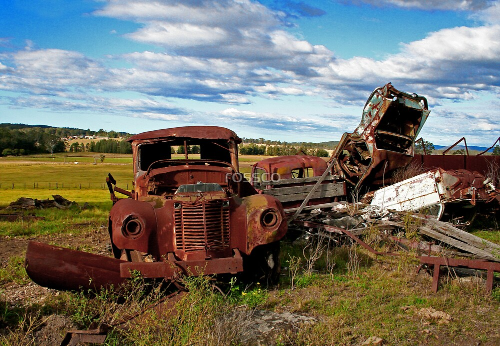Out To Pasture by rossco