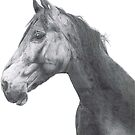 Racehorse by ArtGautreaux
