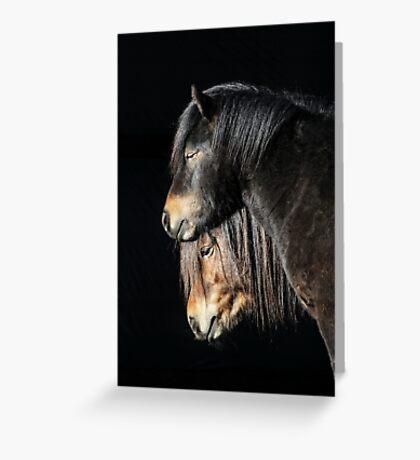 30.3.2017: Shetland Ponies Greeting Card