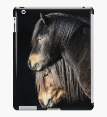 30.3.2017: Shetland Ponies iPad Case/Skin