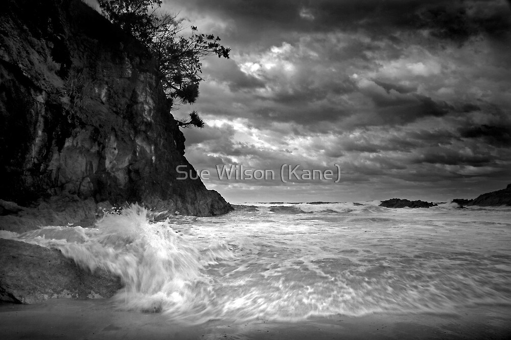 Sounds of the sea by Sue Wilson (Kane)