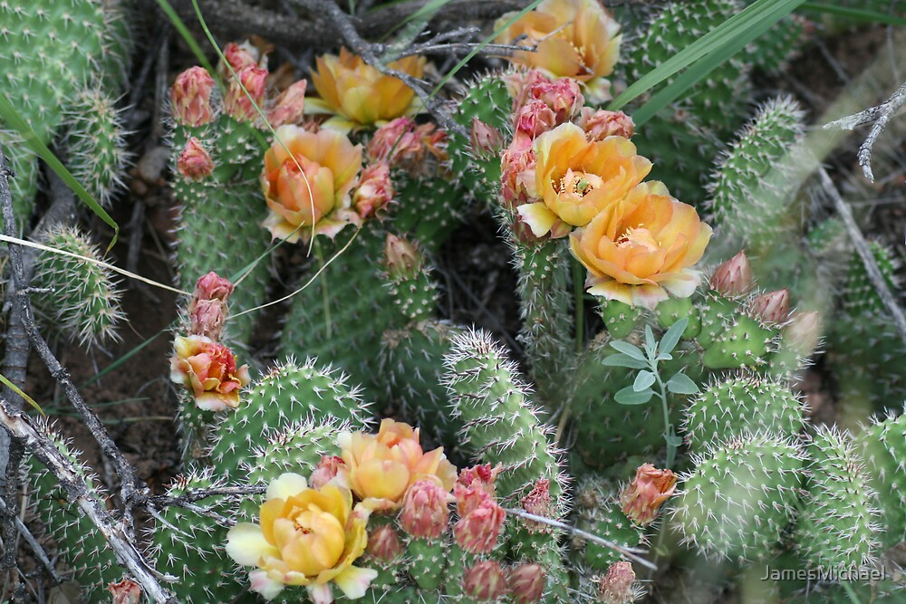 Flowers in Bloom by JamesMichael