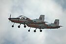 A Pair Of Plastic Parrots - ex-RAAF CT4 Airtrainers by muz2142