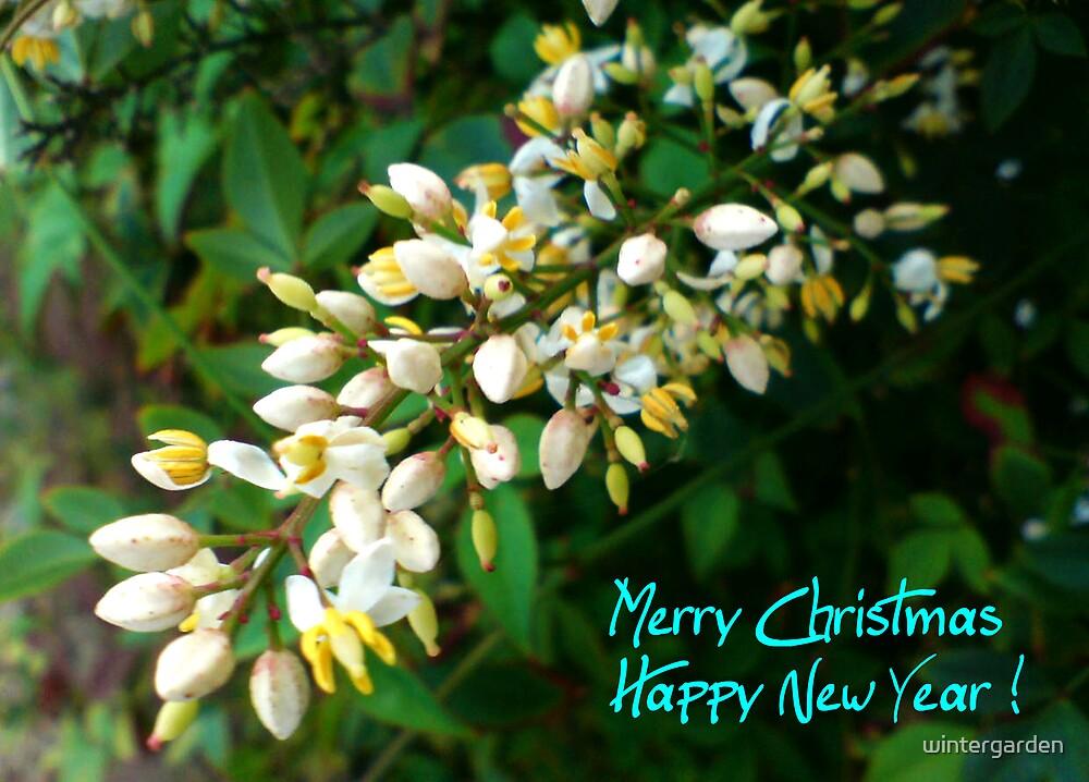 Christmas card by wintergarden