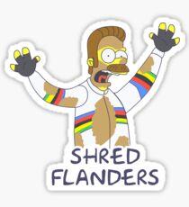 Tour de Flanders Sticker