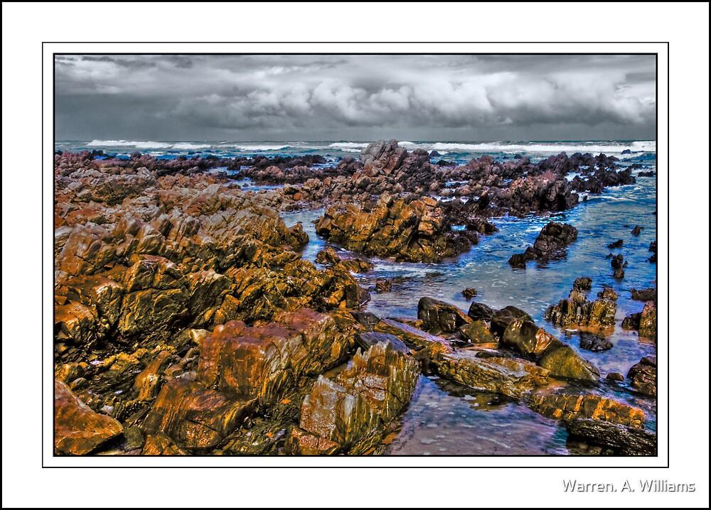 Low tide on the Rocks by Warren. A. Williams