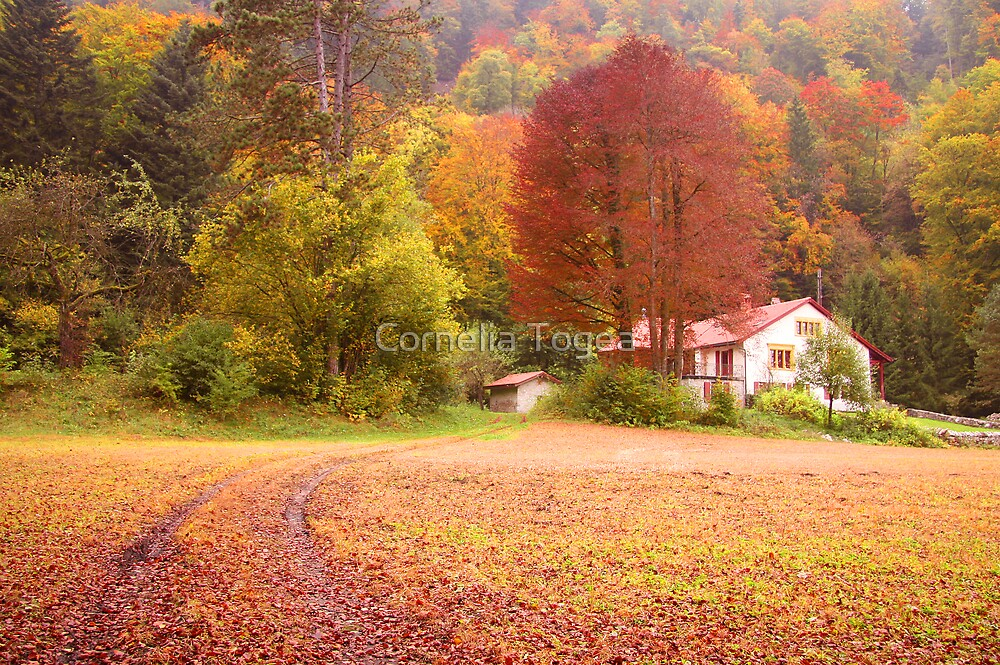 country home by Cornelia Togea