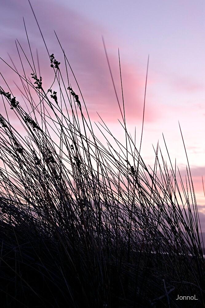 Sunset behind seagrass by JonnoL