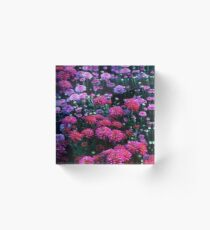 Purple Mood Acrylic Block