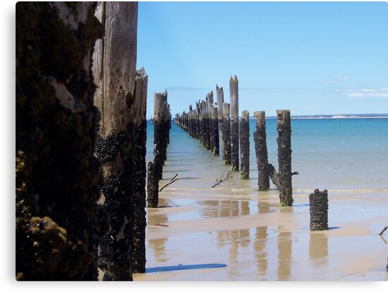 Old Jetty by andytan