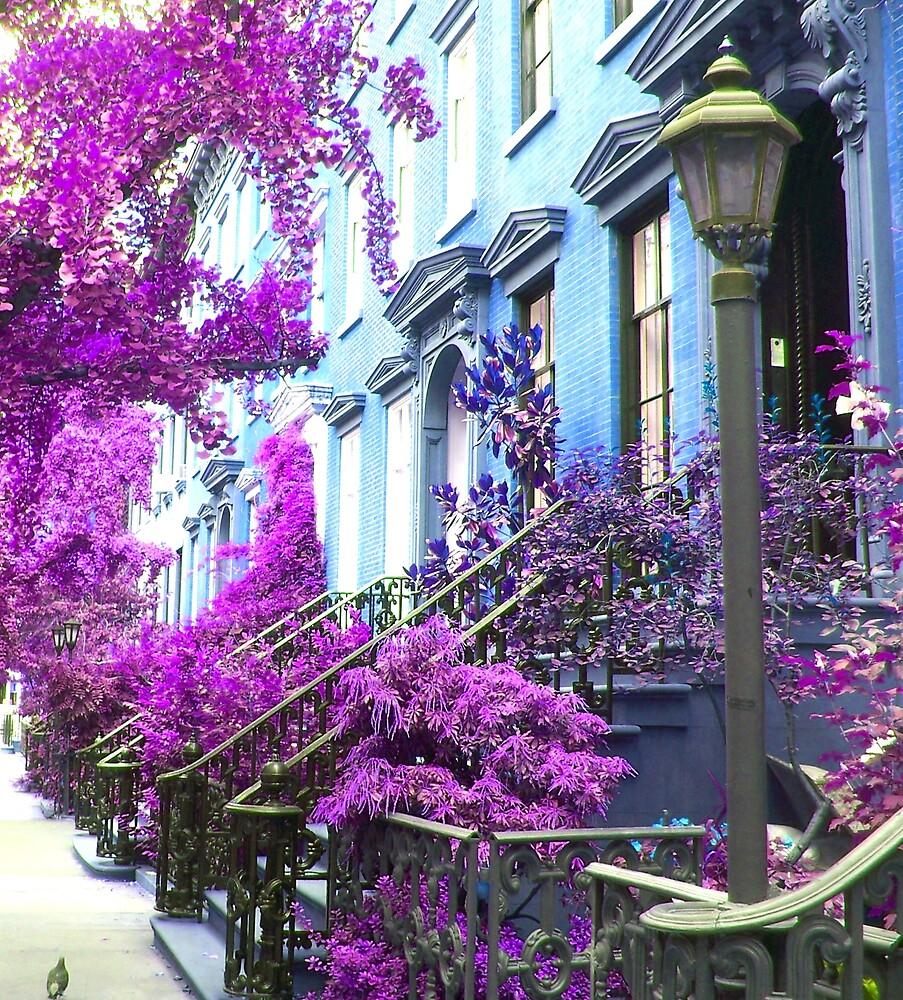 Purple Haze by Ezza