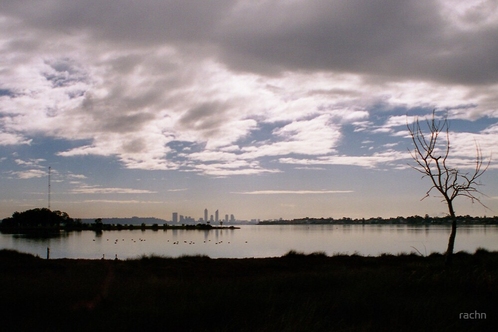 Swan River by rachn