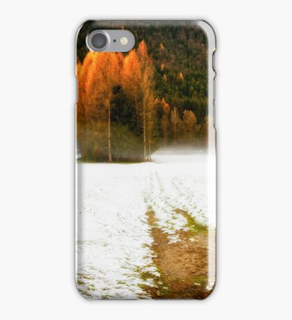 Group of pine trees in the mist iPhone Case/Skin