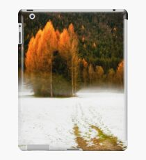 Group of pine trees in the mist iPad Case/Skin