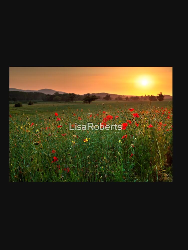 Poppy fields, Worcestershire by LisaRoberts