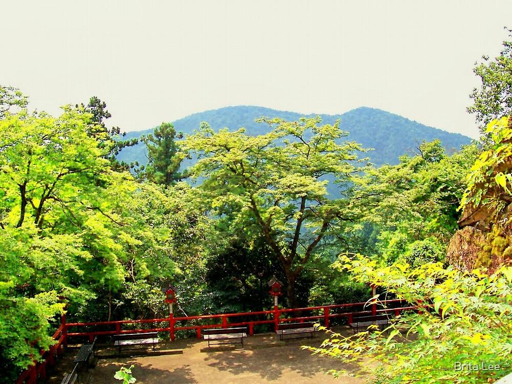 Mt Kurama  by Brita Lee