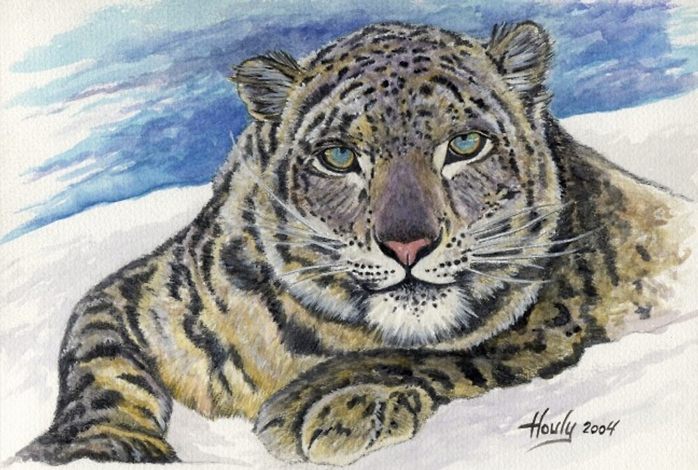 Icy Stare by John Houle