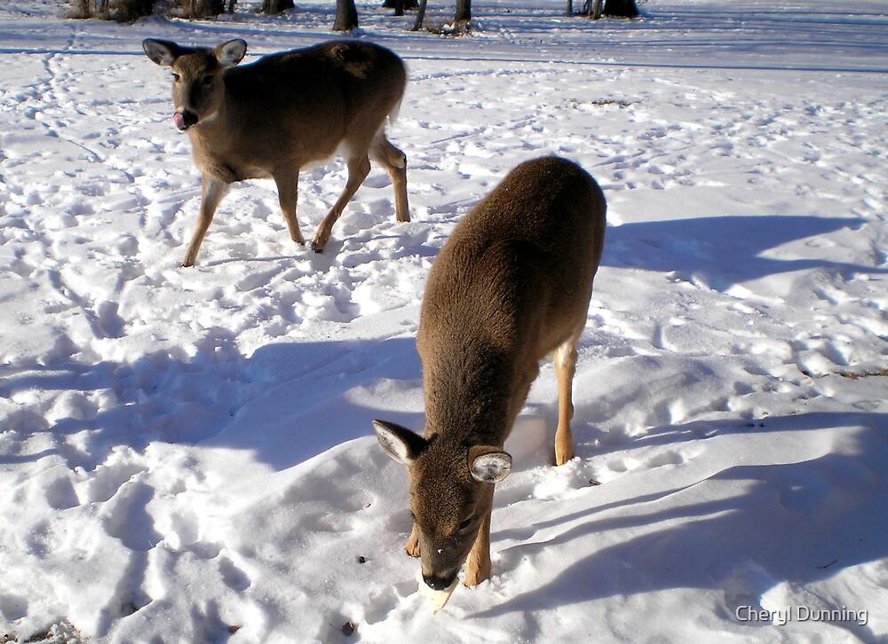 2 deers by Cheryl Dunning