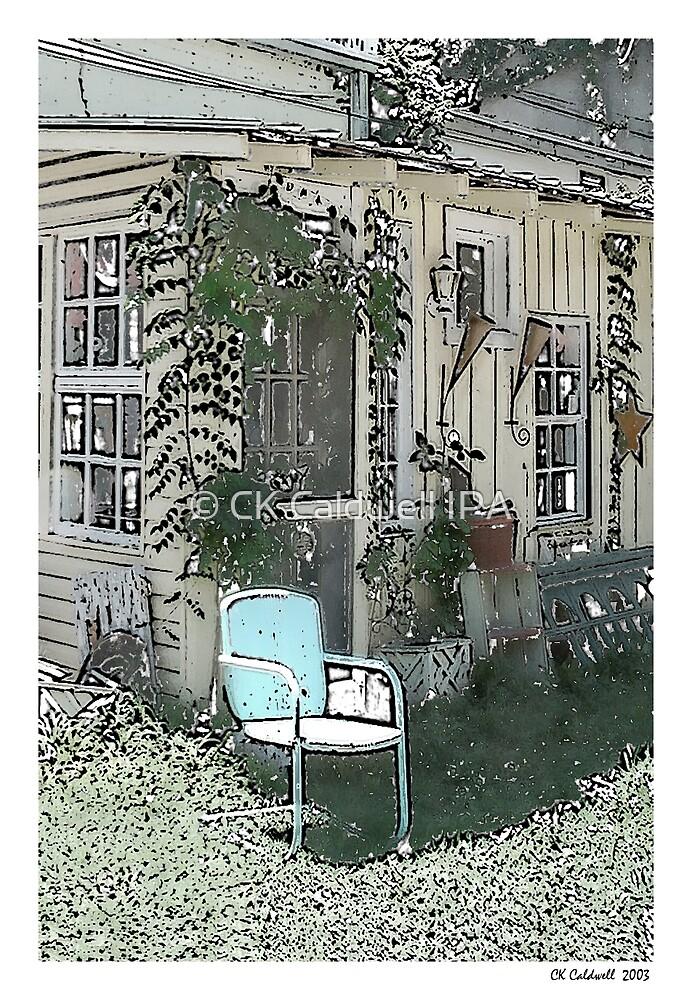 Backyard Chair by © CK Caldwell IPA