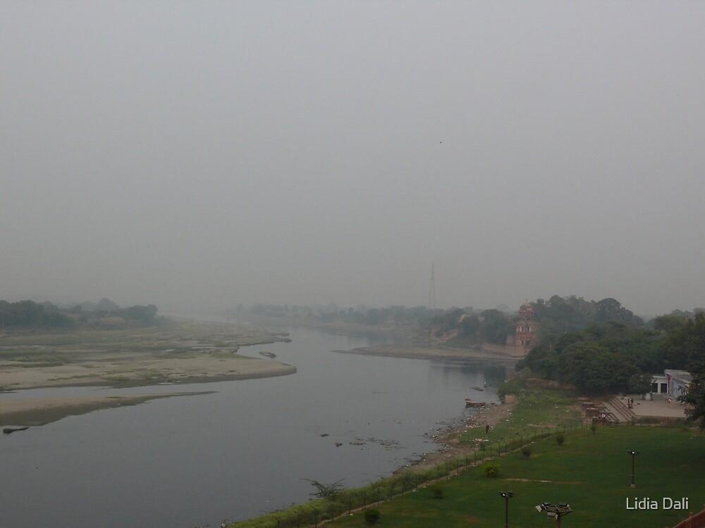 Yamuna in the mist by Lidiya