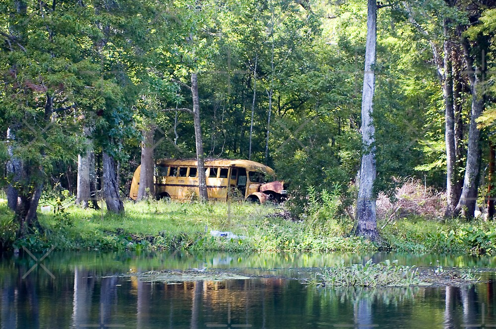Abandoned Bus by Stacey Lynn Payne