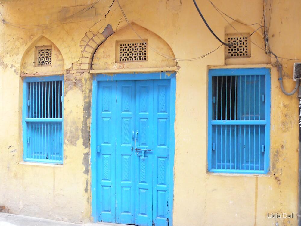 Doors by Lidiya