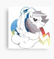 Dashie Canvas Print