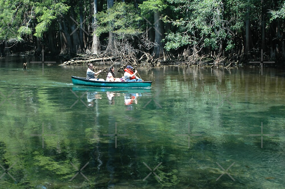 Canoeing on the Spring Run by Stacey Lynn Payne