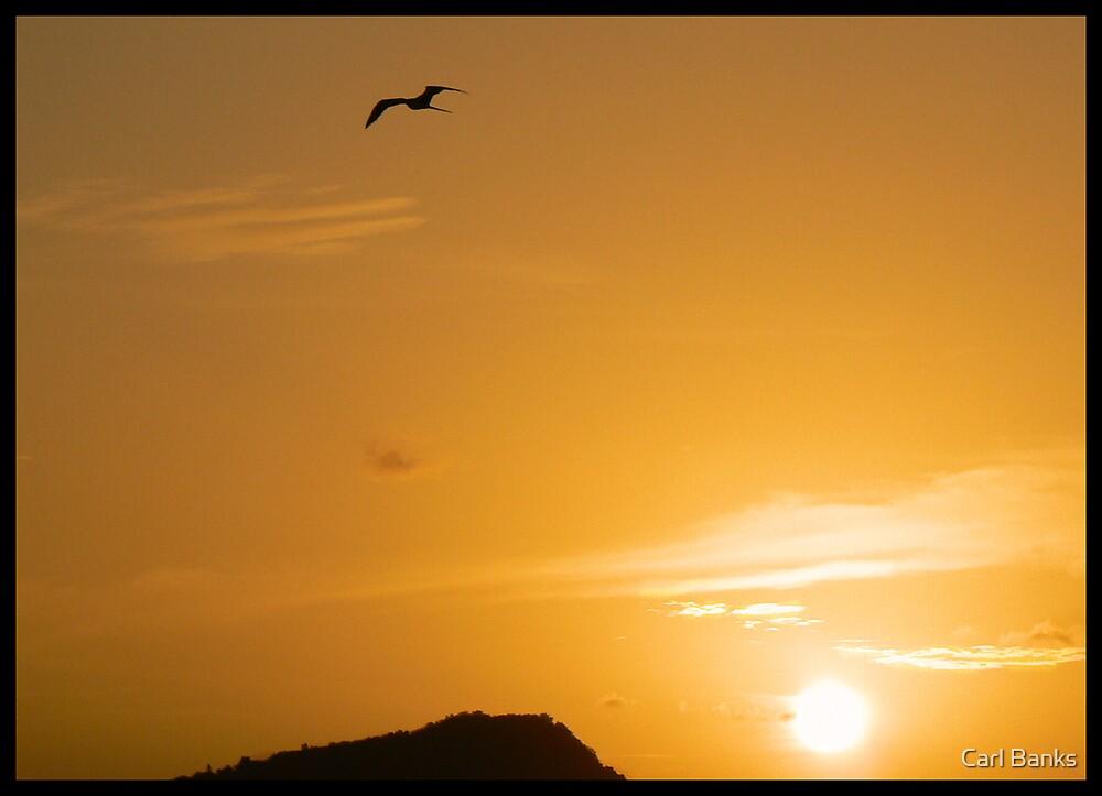 Antigua Sundown by Carl Banks