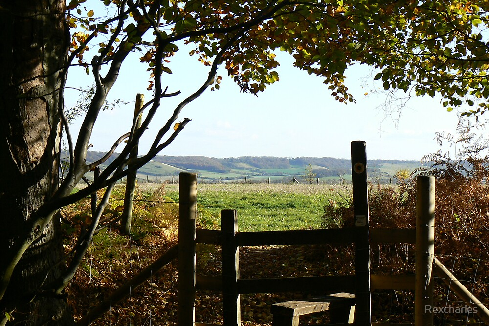 VIEW OVER  THE STILE by Rexcharles