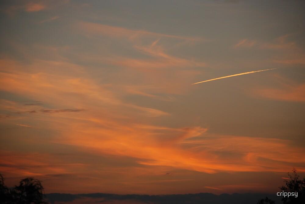 Sunset Photo1 by crippsy