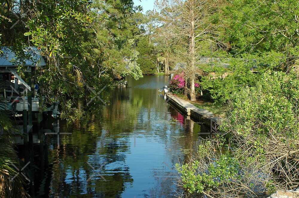 A canal in the Town of Suwannee, Florida by Stacey Lynn Payne