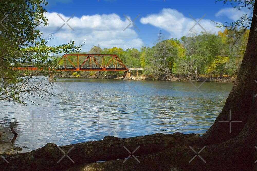 Railroad Trestle over the Suwannee River by Stacey Lynn Payne