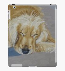 Sleeping Pet iPad Case/Skin