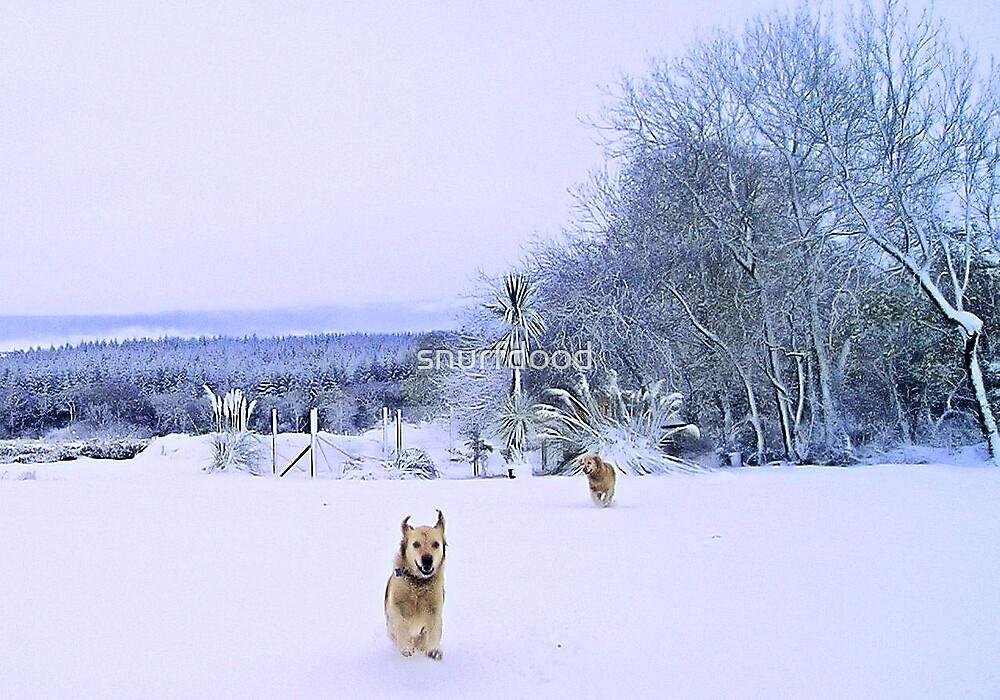Let it Snow! by snurfdood