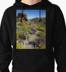 Hanging Garden, Anza-Borrego Desert State Park T-Shirt