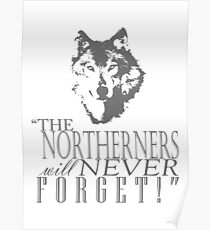King in the North! Poster