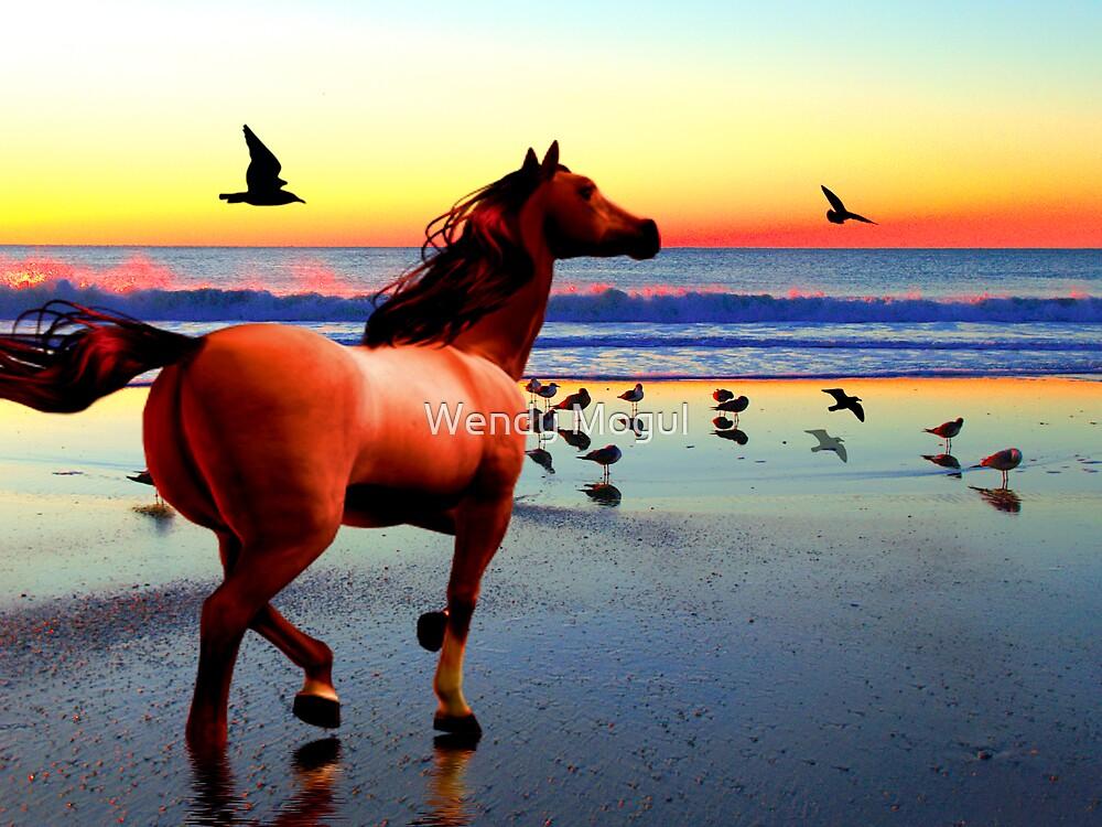 Sunset Run by Wendy Mogul