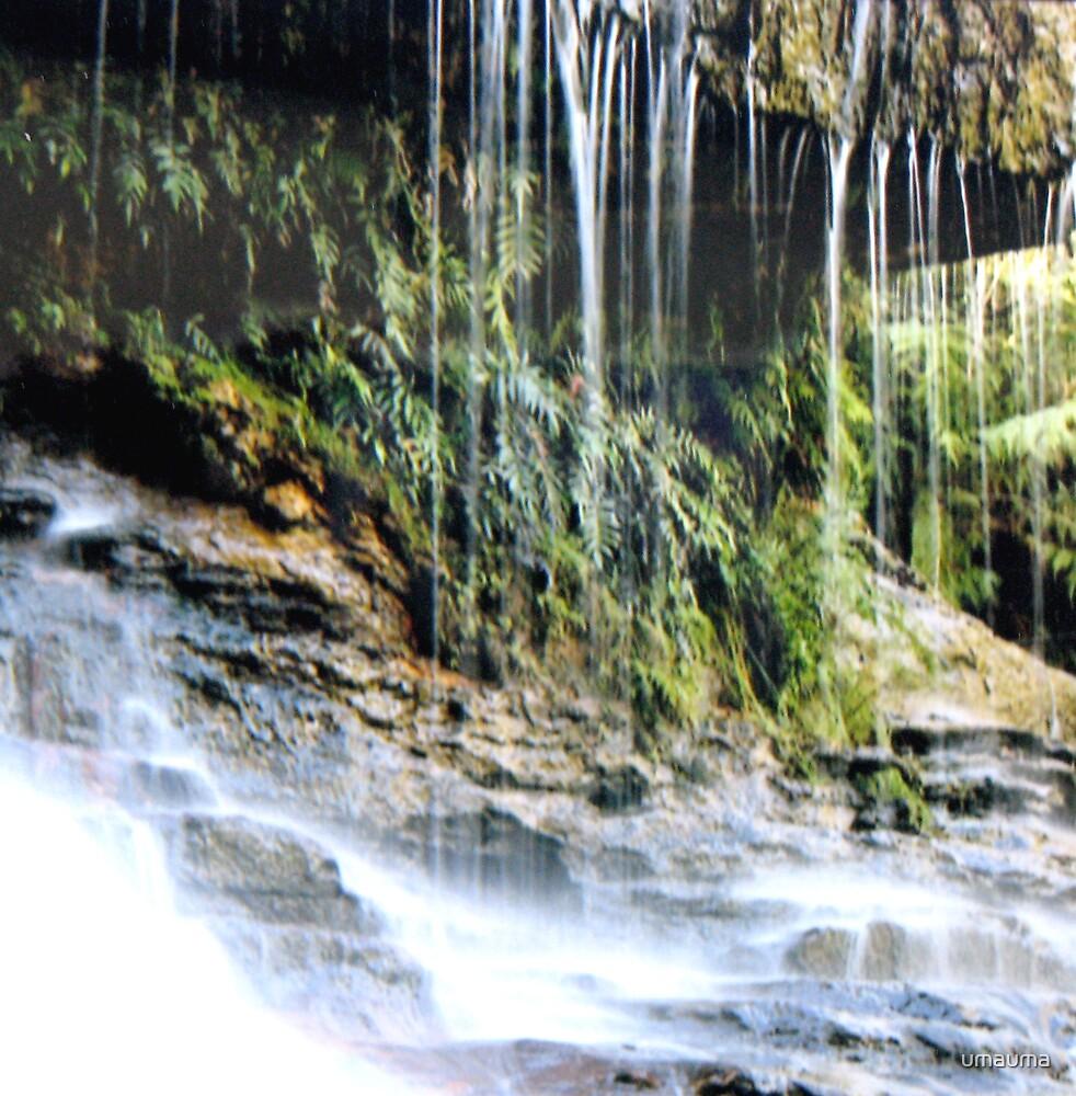 Weeping Rock by umauma