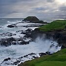 Phillip Island by nsoup