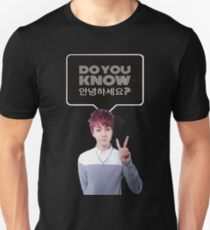 Jin- Do You Know Annyeonghaseyo? T-Shirt