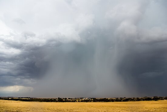 Mallee Rainshaft by Matt Harvey